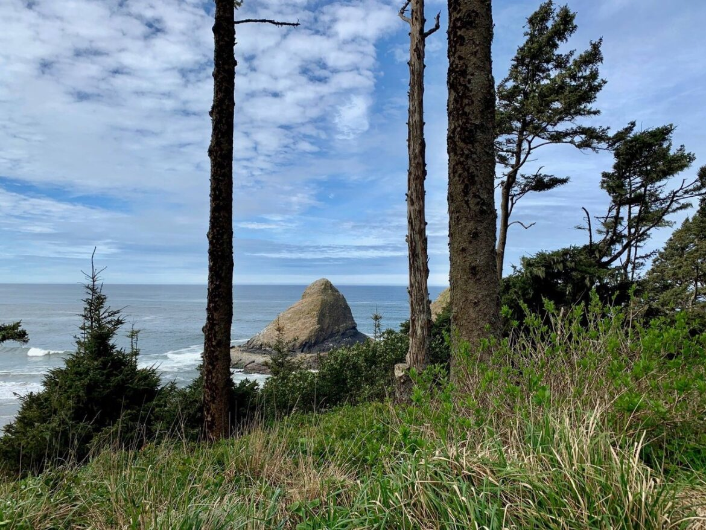 New Roving Nature at Heceta Head, Heceta Lighthouse B&B